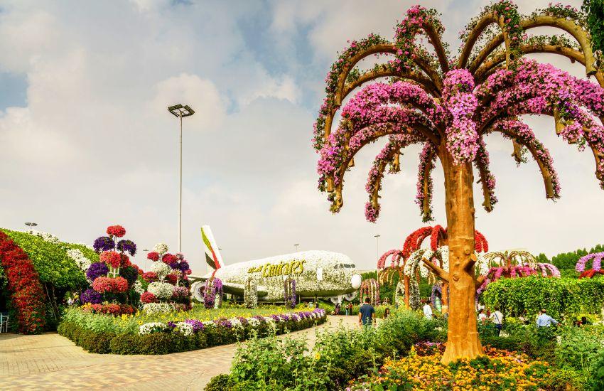 Dubai Miracle Garden Dubai Tourism Thomas Cook
